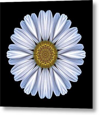 White Daisy Flower Mandala Metal Print