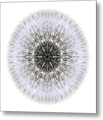 Dandelion Head I Flower Mandala White Metal Print