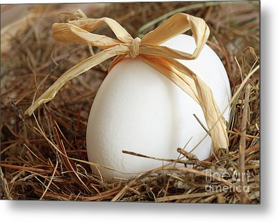 White Egg With Bow On Straw  Metal Print by Sandra Cunningham