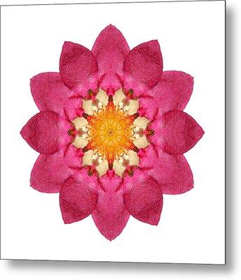 Fragaria Pink Panda I Flower Mandala White Metal Print