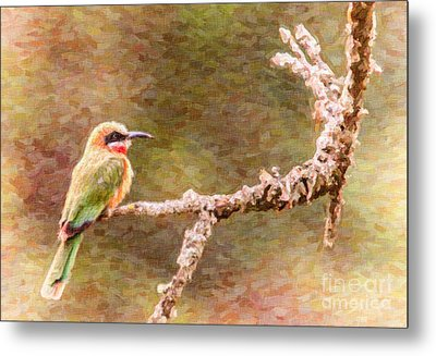 White-fronted Bee-eater Metal Print
