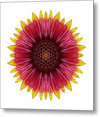Galliardia Arizona Sun I Flower Mandala White Metal Print