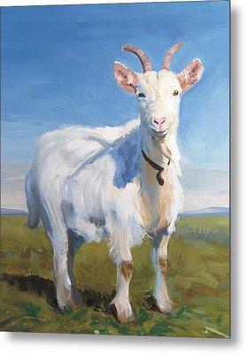 White Goat Metal Print