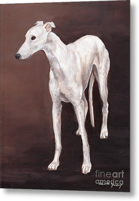 White Greyhound Metal Print by Charlotte Yealey