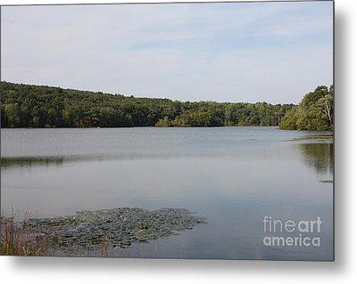 White Heron Lake Poconos Pa Metal Print by John Telfer