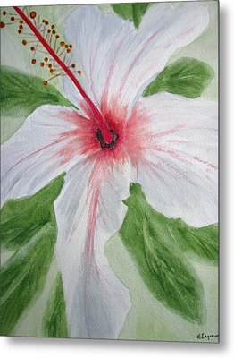 White Hibiscus Flower Metal Print