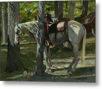 White Horse Tied Metal Print by Don  Langeneckert