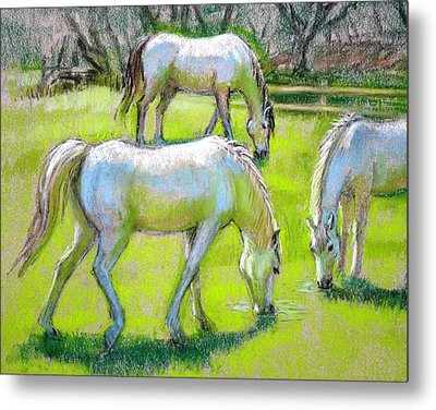 Metal Print featuring the painting White Horses Grazing by Sue Halstenberg