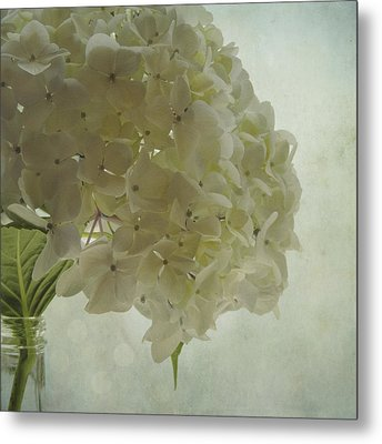 Metal Print featuring the photograph White Hydrangea by Sally Banfill