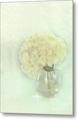 White Hydrangeas Metal Print by Kay Pickens