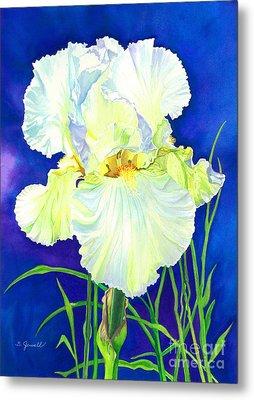 White Iris Metal Print by Barbara Jewell