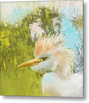 White Kingfisher Metal Print by Catf