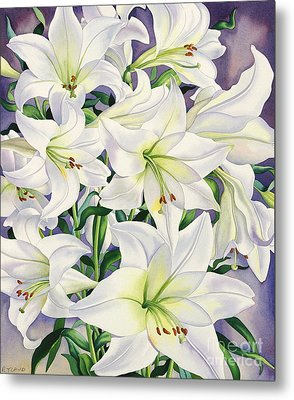 White Lilies Metal Print by Christopher Ryland