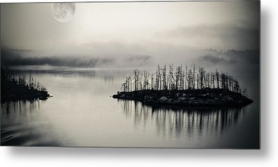 White Night Metal Print by Marianne Campolongo