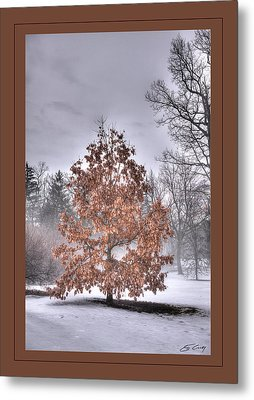Metal Print featuring the digital art White Oak In Fog  Framed by Ed Cilley