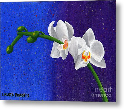 White Orchids Metal Print by Laura Forde