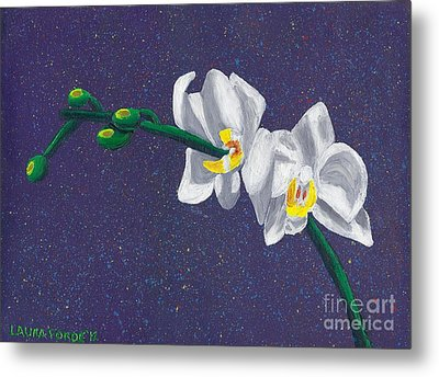 White Orchids On Dark Blue Metal Print by Laura Forde