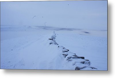 White Out Metal Print by Riley Handforth