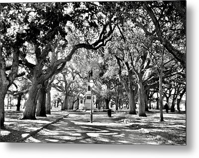 White Point Gardens At Battery Park Charleston Sc Black And White Metal Print