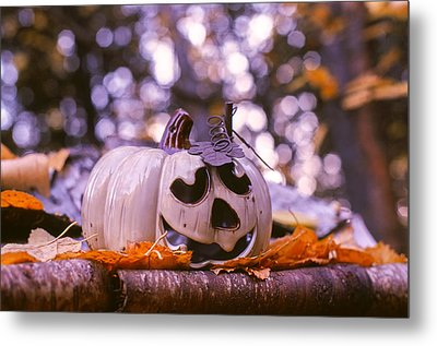 Metal Print featuring the photograph White Pumpkin by Aaron Aldrich