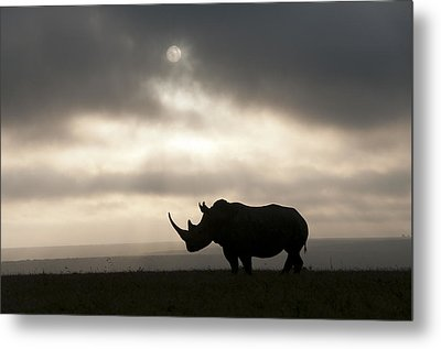 White Rhinoceros At Sunset Kenya Metal Print by Tui De Roy