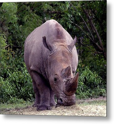 White Rhinoceros Water Coloring Metal Print by Joseph Baril