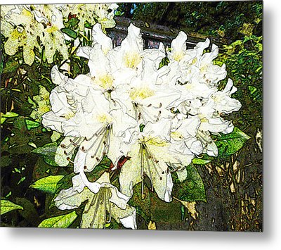 Metal Print featuring the photograph White Rhodo Chalk by Laurie Tsemak