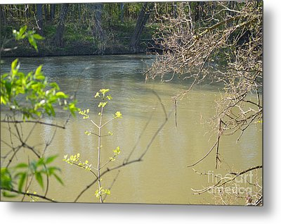 White River Metal Print by Alys Caviness-Gober