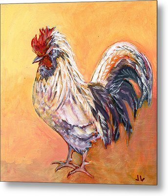 White Rooster Metal Print by Jennifer Lommers