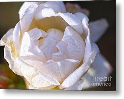 White Rose Metal Print by Nur Roy