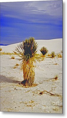 White Sands National Monument Cactus Metal Print by ImagesAsArt Photos And Graphics