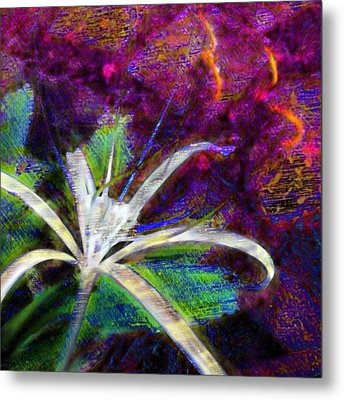 White Spider Flower On Orange And Plum - Square Metal Print