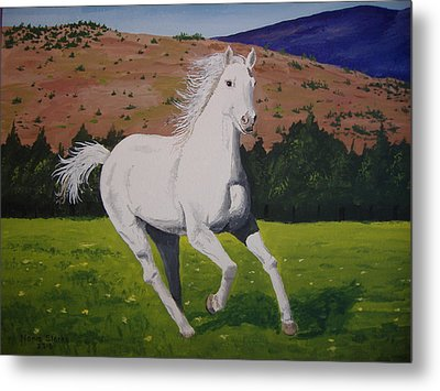Metal Print featuring the painting White Stallion by Norm Starks