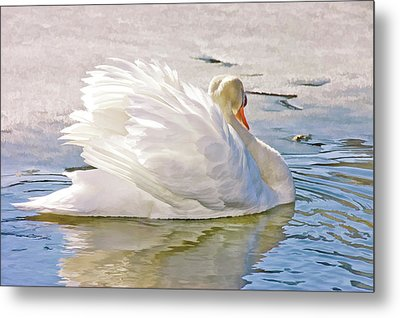 Metal Print featuring the photograph White Swan by Elaine Manley