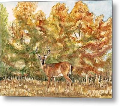 White Tail Buck In The Ozarks  Metal Print by Patty Vicknair