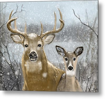 White Tail Winter Metal Print by Eric Smith