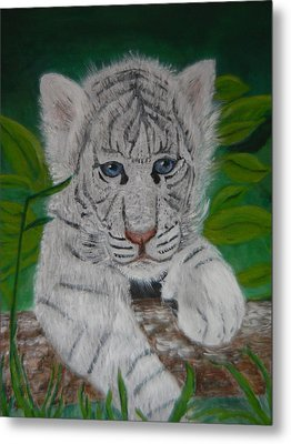 White Tiger Cub Metal Print by Mary M Collins