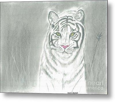 White Tiger Metal Print by David Jackson
