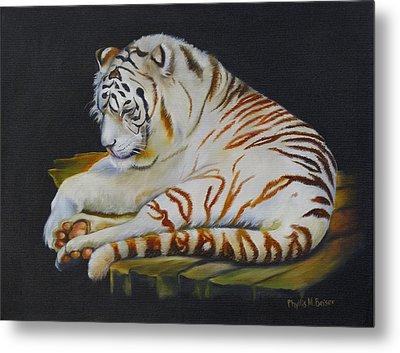 White Tiger Sleeping Metal Print by Phyllis Beiser