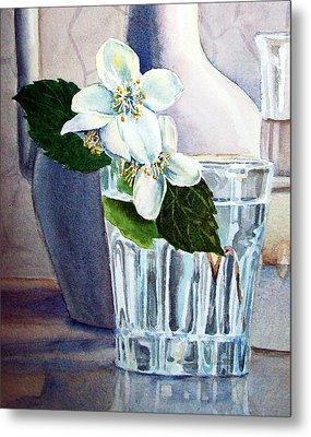 White White Jasmine  Metal Print by Irina Sztukowski