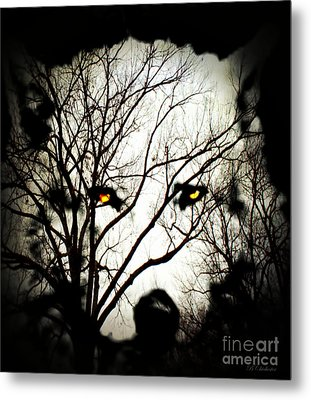 White Wolf Metal Print by Barbara Chichester