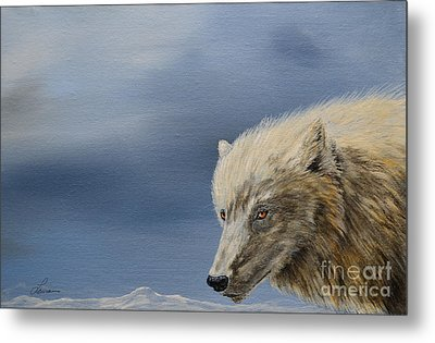 White Wolf3 Metal Print by Laurianna Taylor