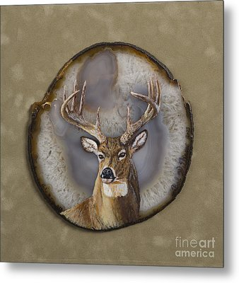 Whitetail Authority Metal Print