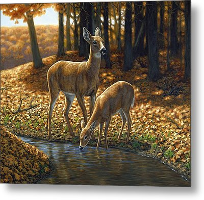 Whitetail Deer - Autumn Innocence 1 Metal Print by Crista Forest
