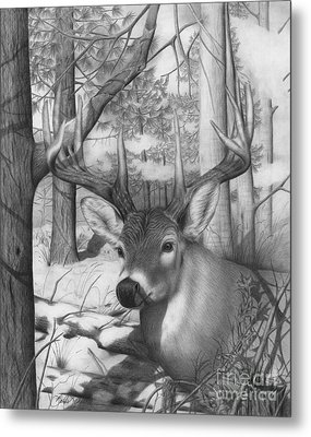 Whitetail Phantom Metal Print
