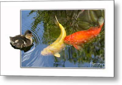 Metal Print featuring the photograph Who Are You? by Mariarosa Rockefeller