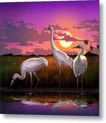 Whooping Cranes At Sunset Tropical Landscape - Square Format Metal Print by Walt Curlee
