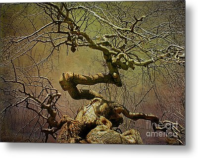 Wicked Tree Metal Print