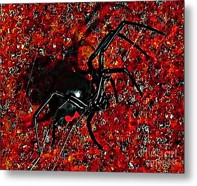 Wicked Widow - Rouge Metal Print by Al Powell Photography USA