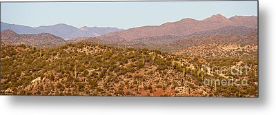 Wickenburg Mountains Metal Print by Suzanne Oesterling